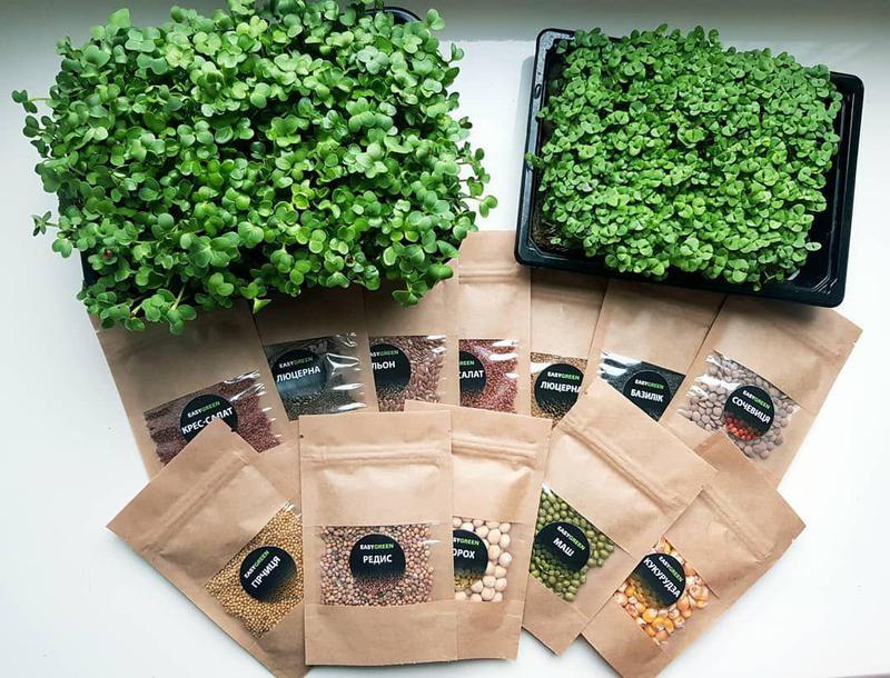 Набор для выращивания Микрозелени 3 урожая