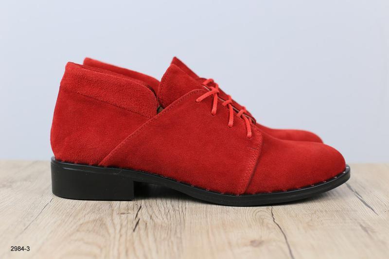 Женские замшевые туфли - Фото 2