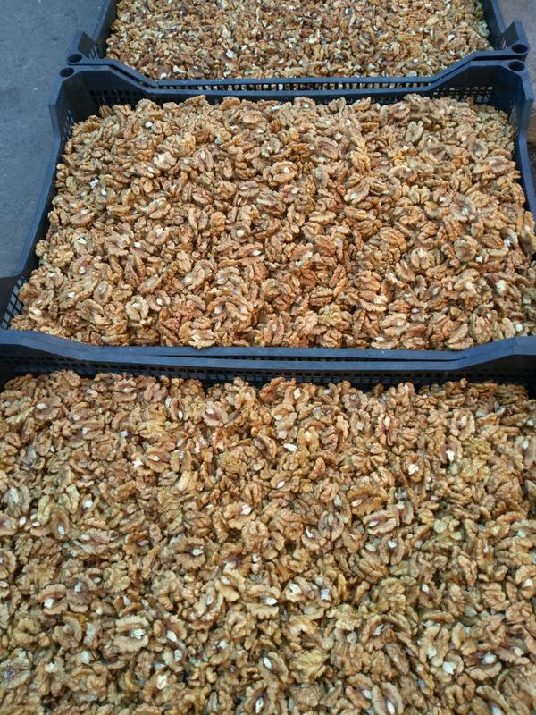 Грецкие орехи - Фото 2