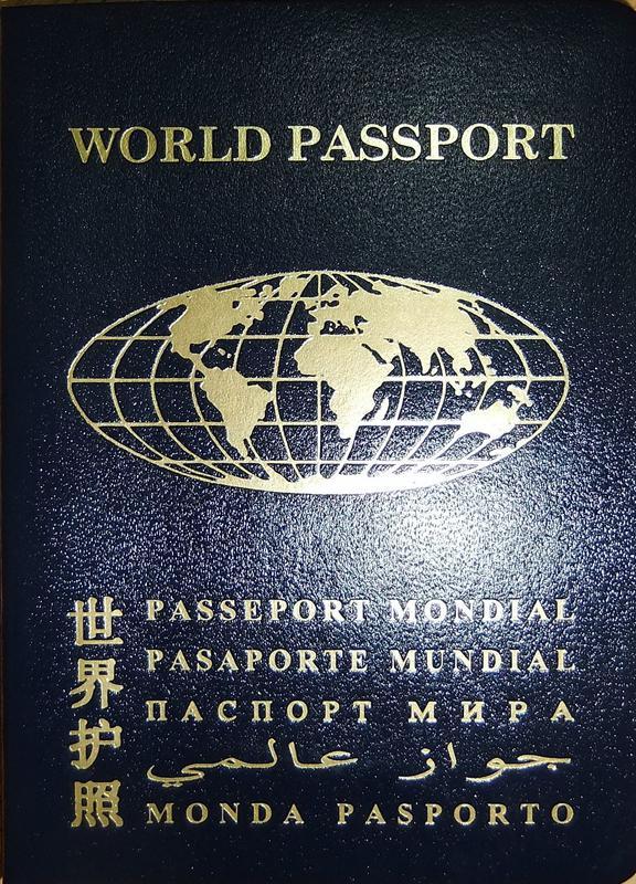 Паспорт гражданина мира Украина - Фото 2
