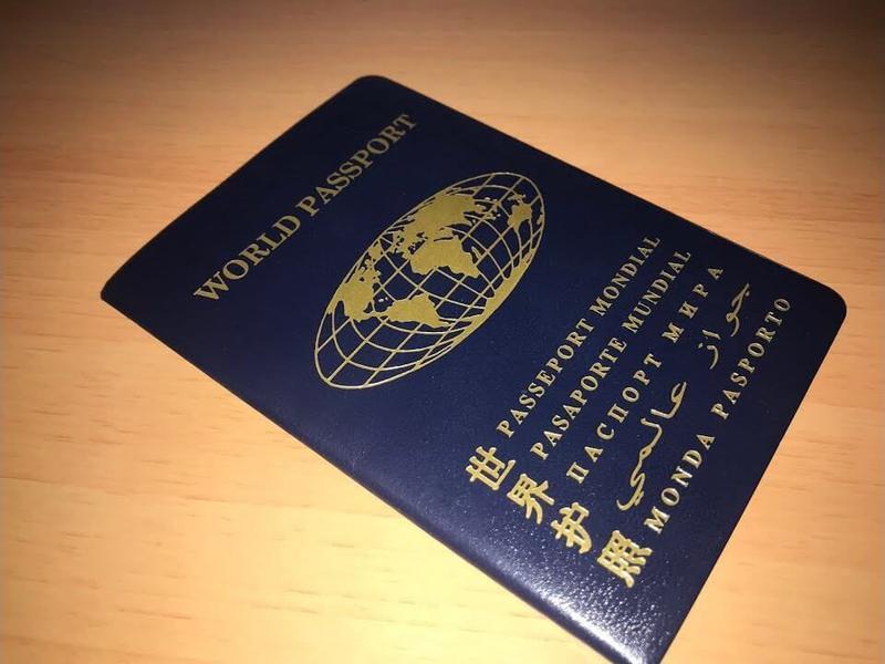 Паспорт гражданина мира Украина - Фото 4