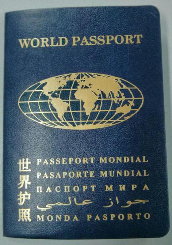 Паспорт гражданина мира Украина - Фото 5
