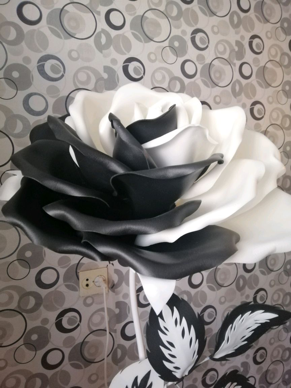 Ростова я черно-белая роза - Фото 2