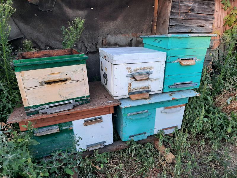 Улья, улики, пчелорамка, нуклеус