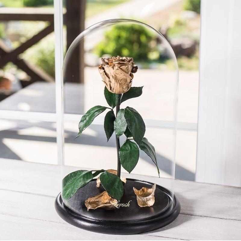 Стабилизированная роза в колбе 1 год гарантии