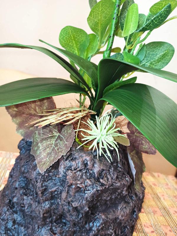 Орхидея искусственная латексная - Фото 6