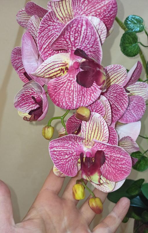 Орхидея искусственная латексная - Фото 3