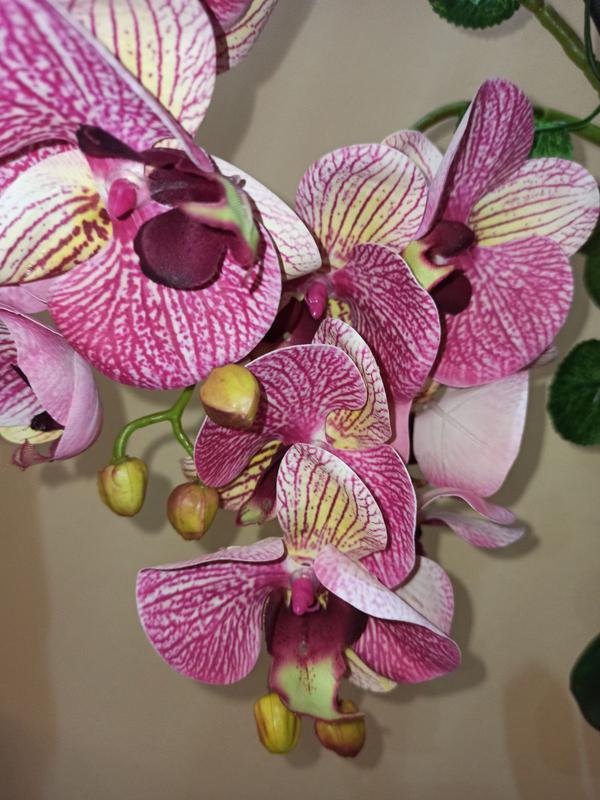 Орхидея искусственная латексная - Фото 4