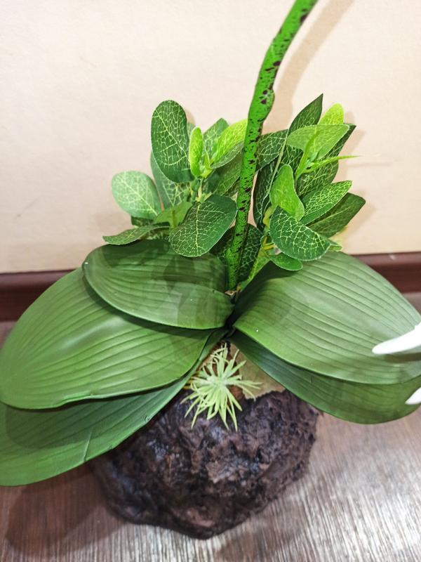Орхидея искусственная латексная - Фото 8