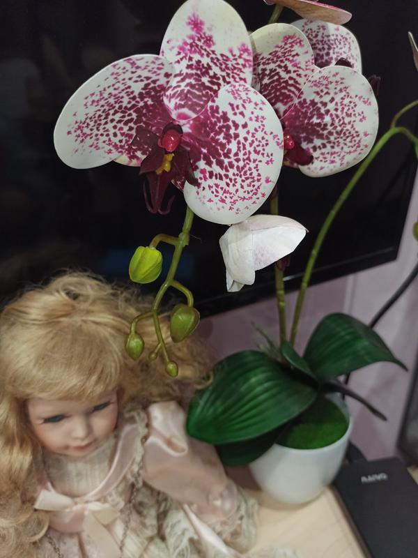 Орхидея искусственная латексная - Фото 13