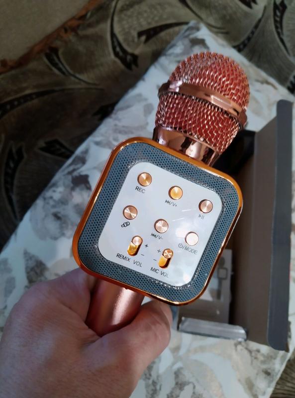Микрофон DM Karaoke WS 1818