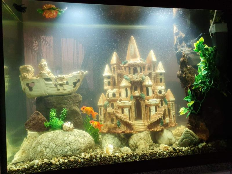 Производим аквариумы высокого качества под заказ