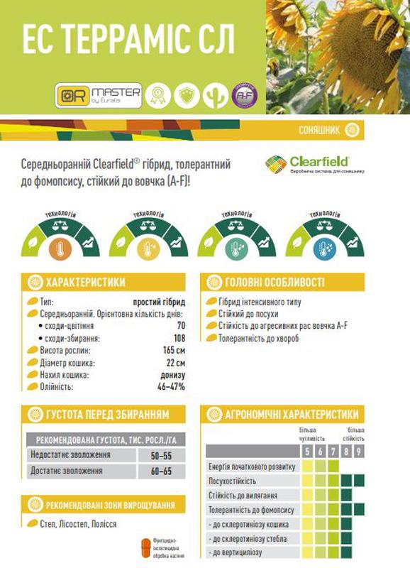 "Семена подсолнечника гибрид ""ЕС Террамис СЛ"" на 2021. - Фото 2"