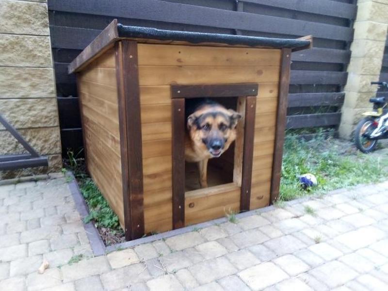 Красивая будка для овчарки   Большой собаки