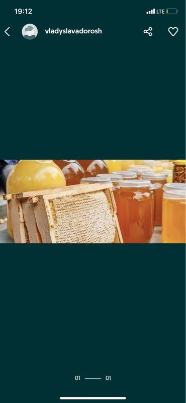 Мед медок мёд