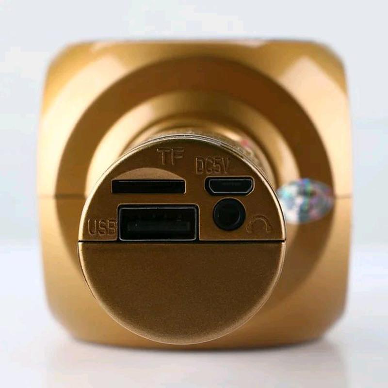Микрофон с функцией караоке Wster WS-1816 - Фото 4