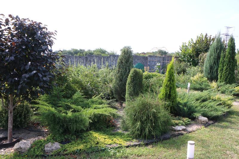 Садовник. Уход за плодовыми и декоративными растениями. - Фото 3