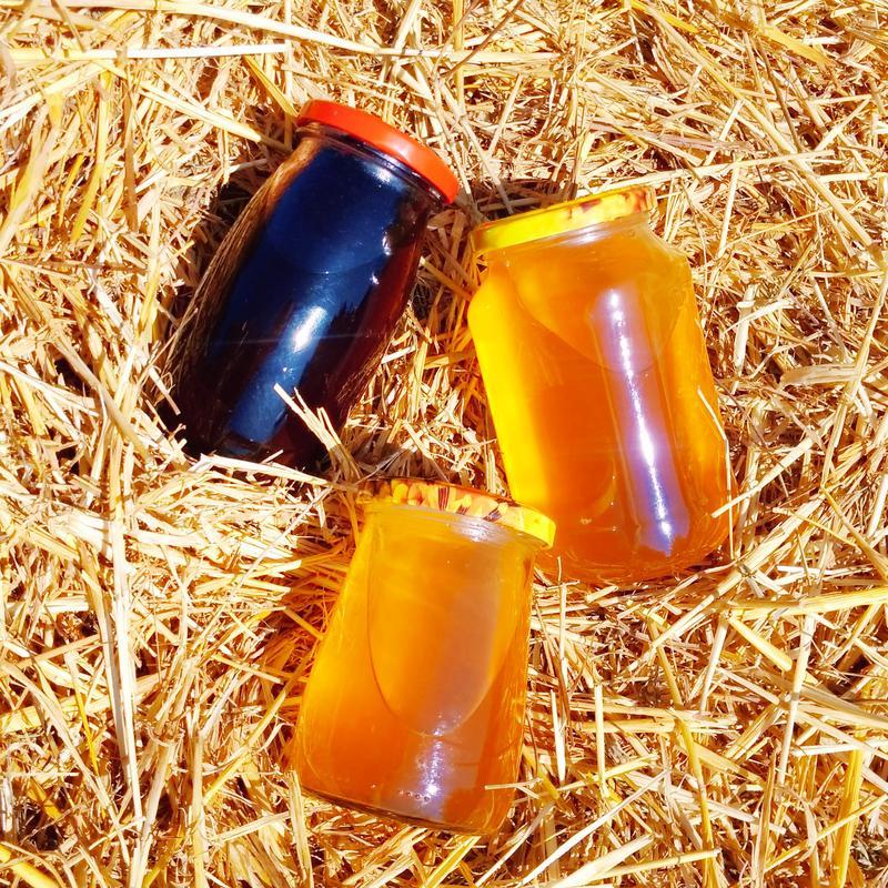 Чистый 100% сок ягод бузины черной, 0.5 л - Фото 4