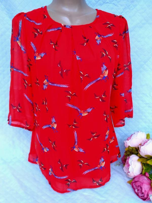 Шикарная яркая блуза в птички и павлины размер 10-12 (42-44)