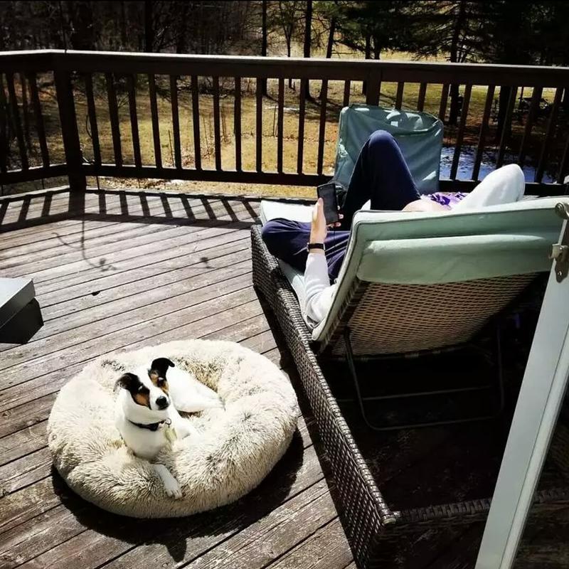 Лежак лежанка для кошек собак ,домик подстилка - Фото 5