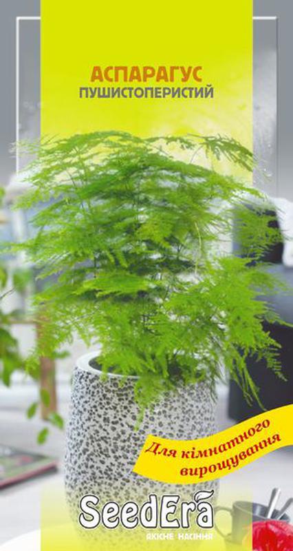 Комнатные цветы Аспарагус декоративный пушистоперистый 0,1г SeedE