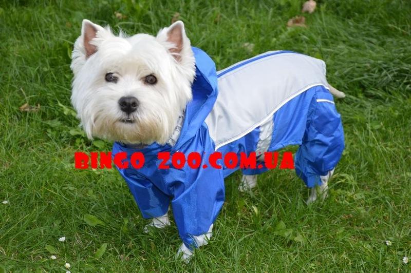 Дождевики комбинезоны для собак - Фото 3