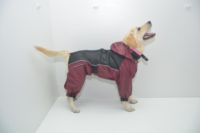 Дождевики комбинезоны для собак - Фото 4