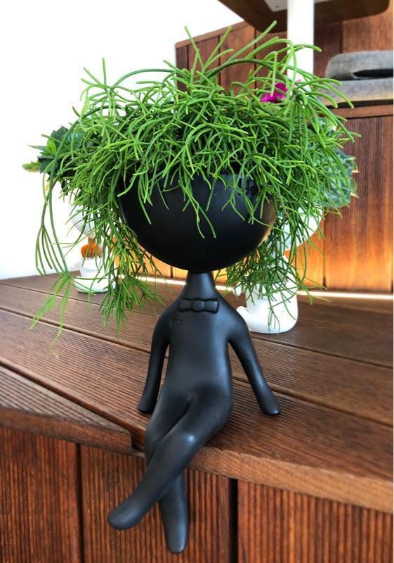 Дизайнерский кашпо(горшок) для растений - Фото 3