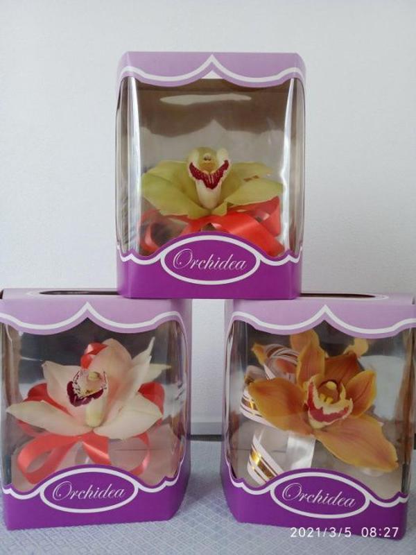 Свежесрезанная орхидея