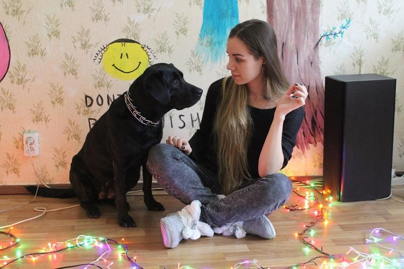 Передержка собак в квартире