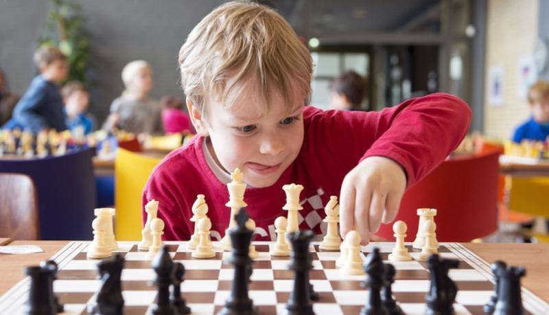 Шахматы. Обучение детей и взрослых. Индивидуальные уроки