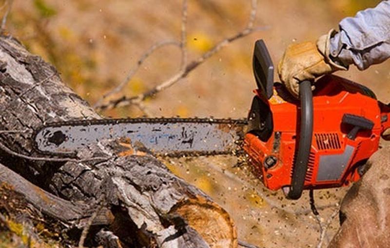 срезать и порезать дерево бензопилой