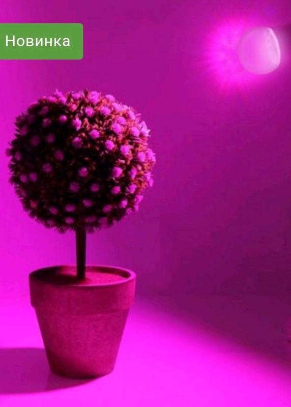 Фито лампа для цветов и росади