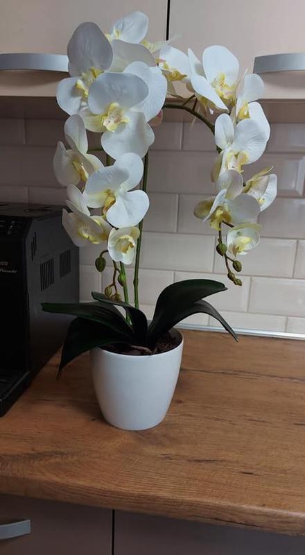 Латексні орхідеї - Фото 2