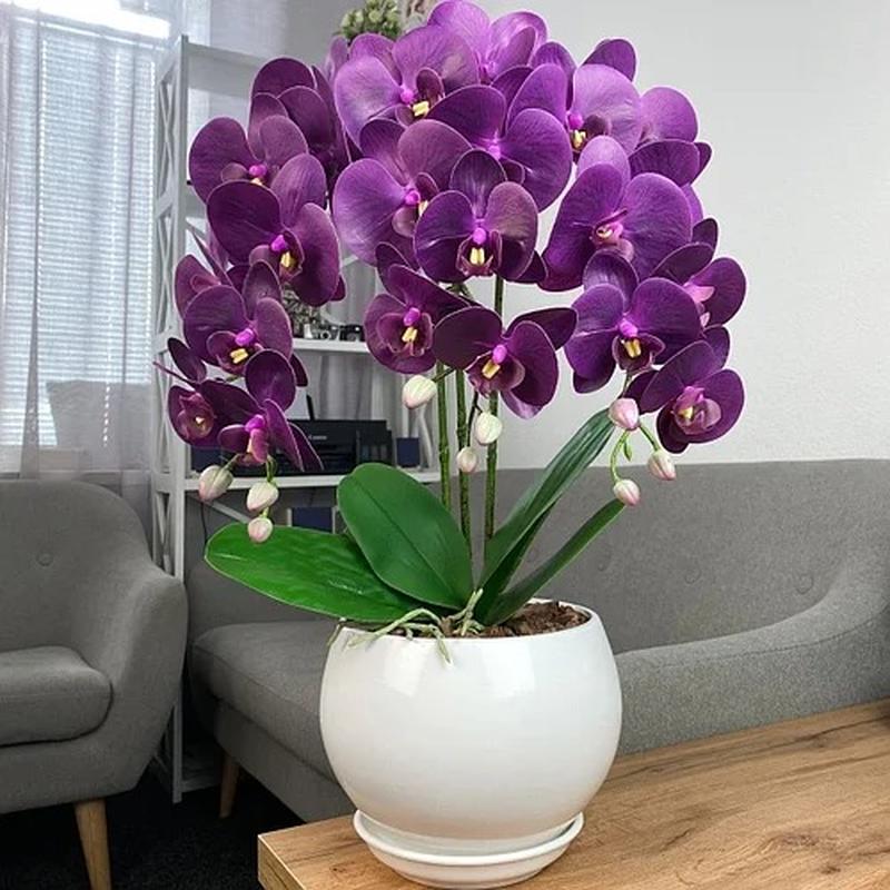 Латексні орхідеї - Фото 4