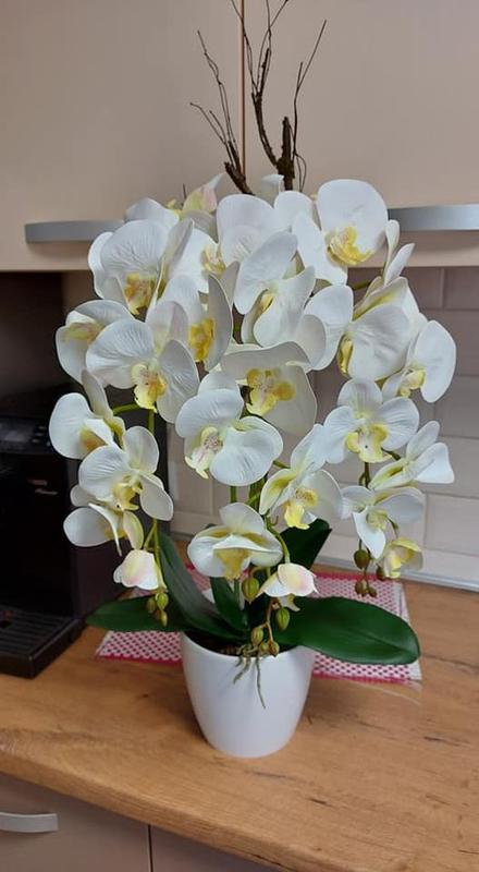 Латексні орхідеї - Фото 6