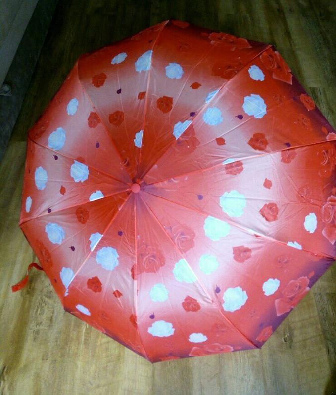 Зонт полуавтомат pasio umbrella