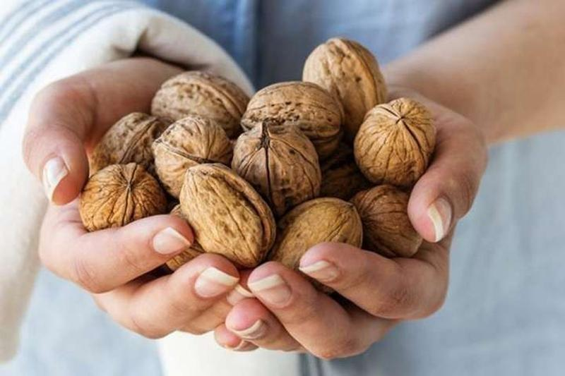 Грецкие орехи недорого Киев