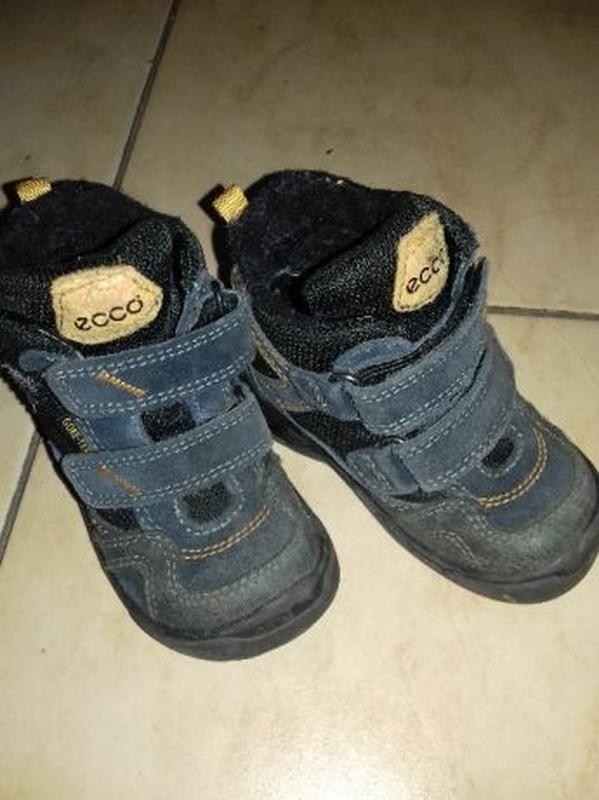 Демисезонные ботинки ecco 23 размер