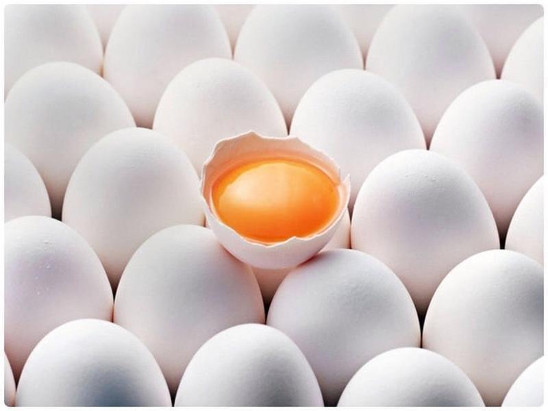 Яйцо куриное, С0, C1, C2, крупный опт, только Украина.