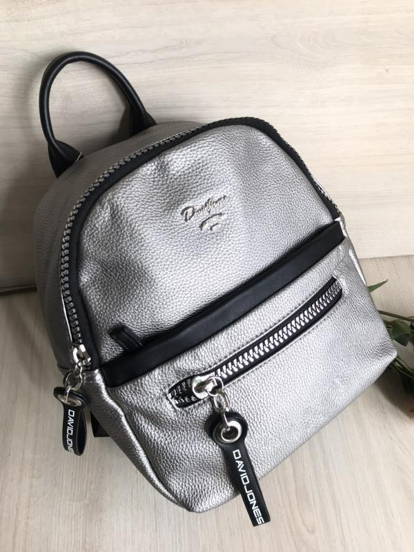2 цвета рюкзак рюкзачок david jones