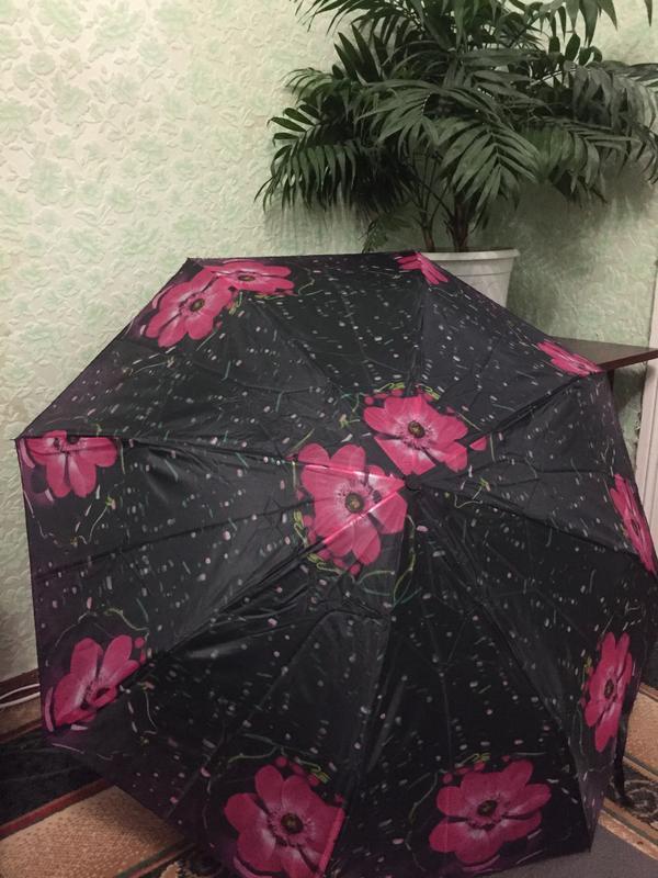 Зонт механика
