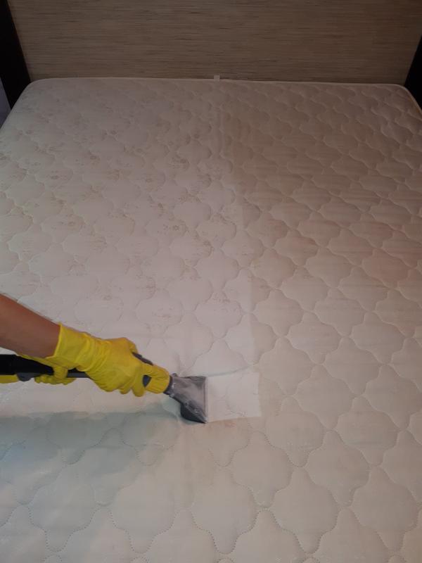 Химчистка мягкой мебели и ковровых покрытий - Фото 3