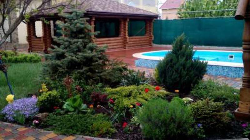 Озеленение и уход за растениями - Фото 4