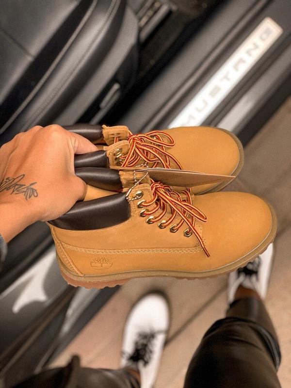 Шикарные женские ботинки timberland 6 inch premium ginger терм... - Фото 2