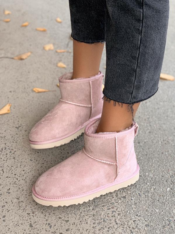 Ugg classic mini pink розовые низкие шикарные женские сапоги б... - Фото 3