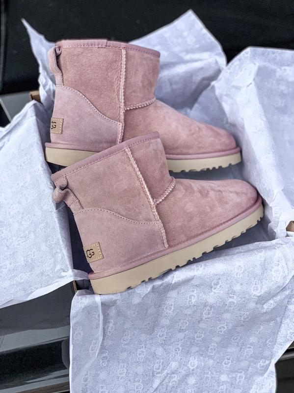Ugg classic mini pink розовые низкие шикарные женские сапоги б... - Фото 5