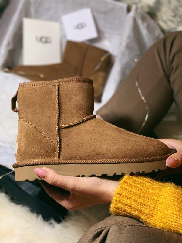 Шикарные женские зимние сапоги ботинки ugg boots australia  brown