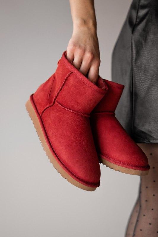 Шикарные женские зимние сапоги ботинки ugg classic ii mini wine