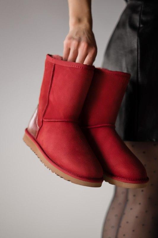 Шикарные женские зимние сапоги ботинки ugg classic short ii me...